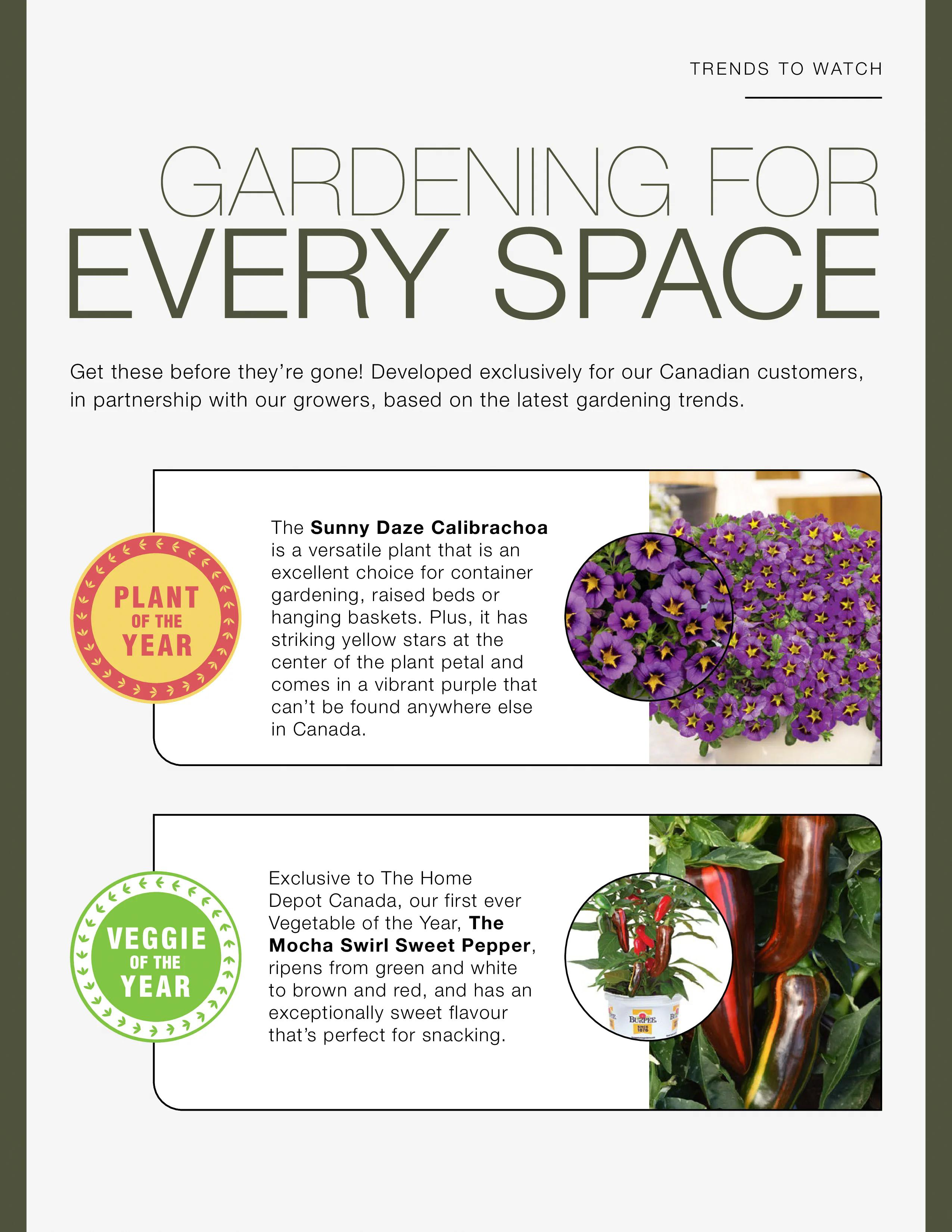 Home Depot - Outdoor Living - Page 20