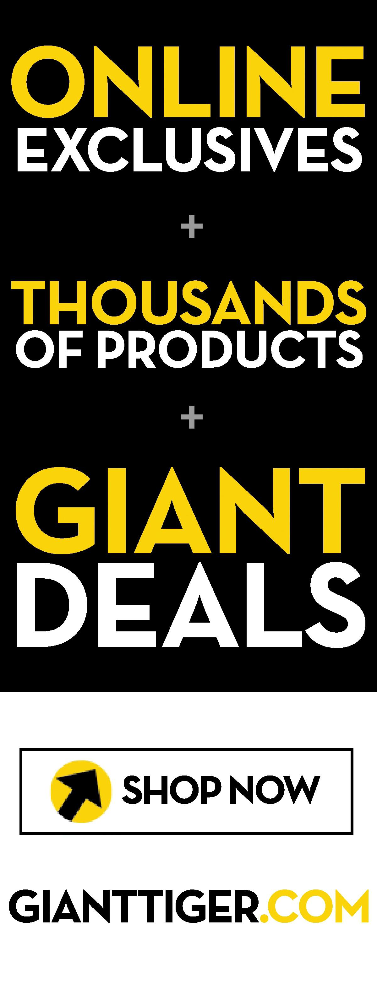 Giant Tiger - Weekly Flyer Specials - Page 24