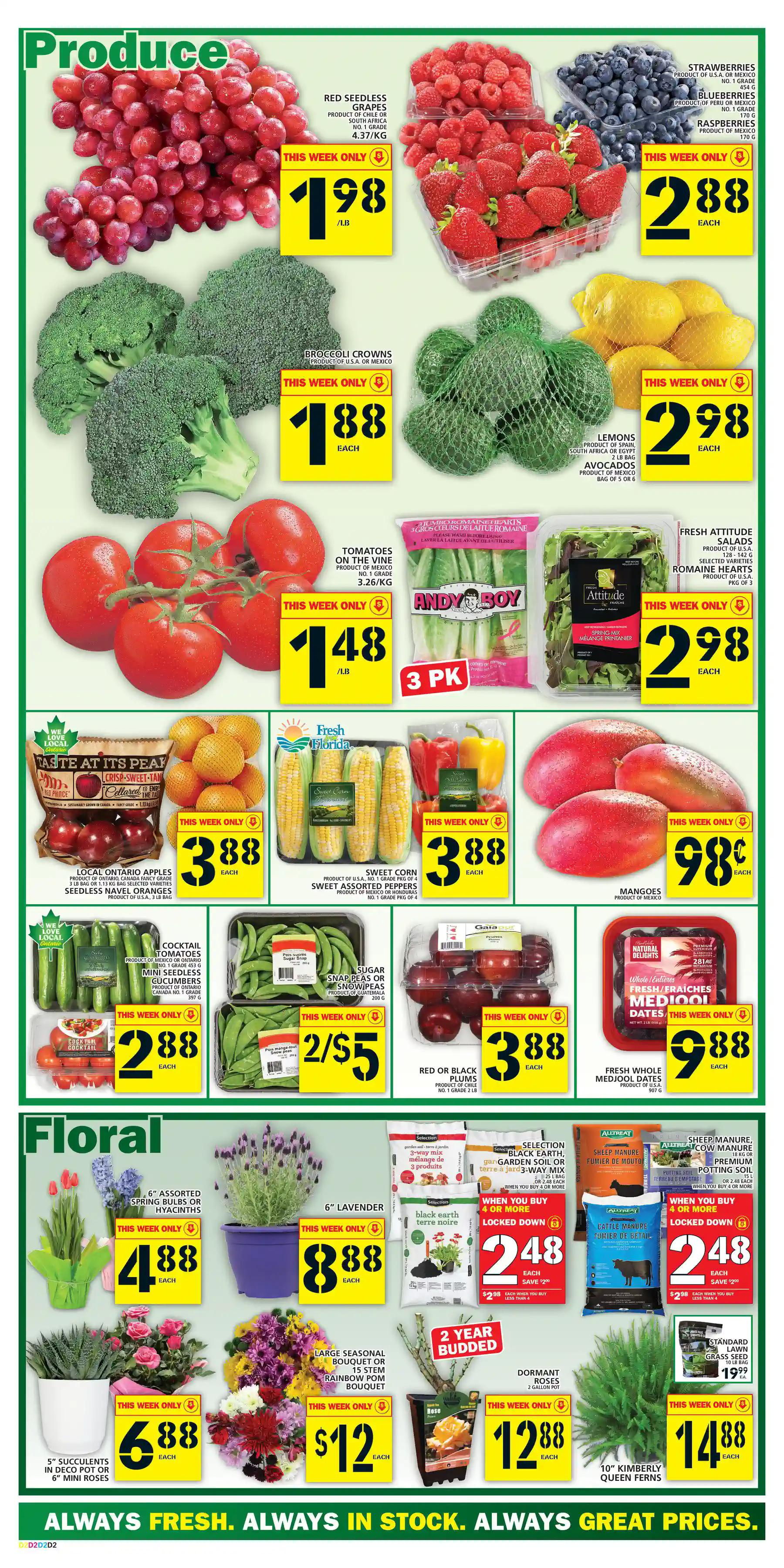 Food Basics - Weekly Flyer Specials - Page 3