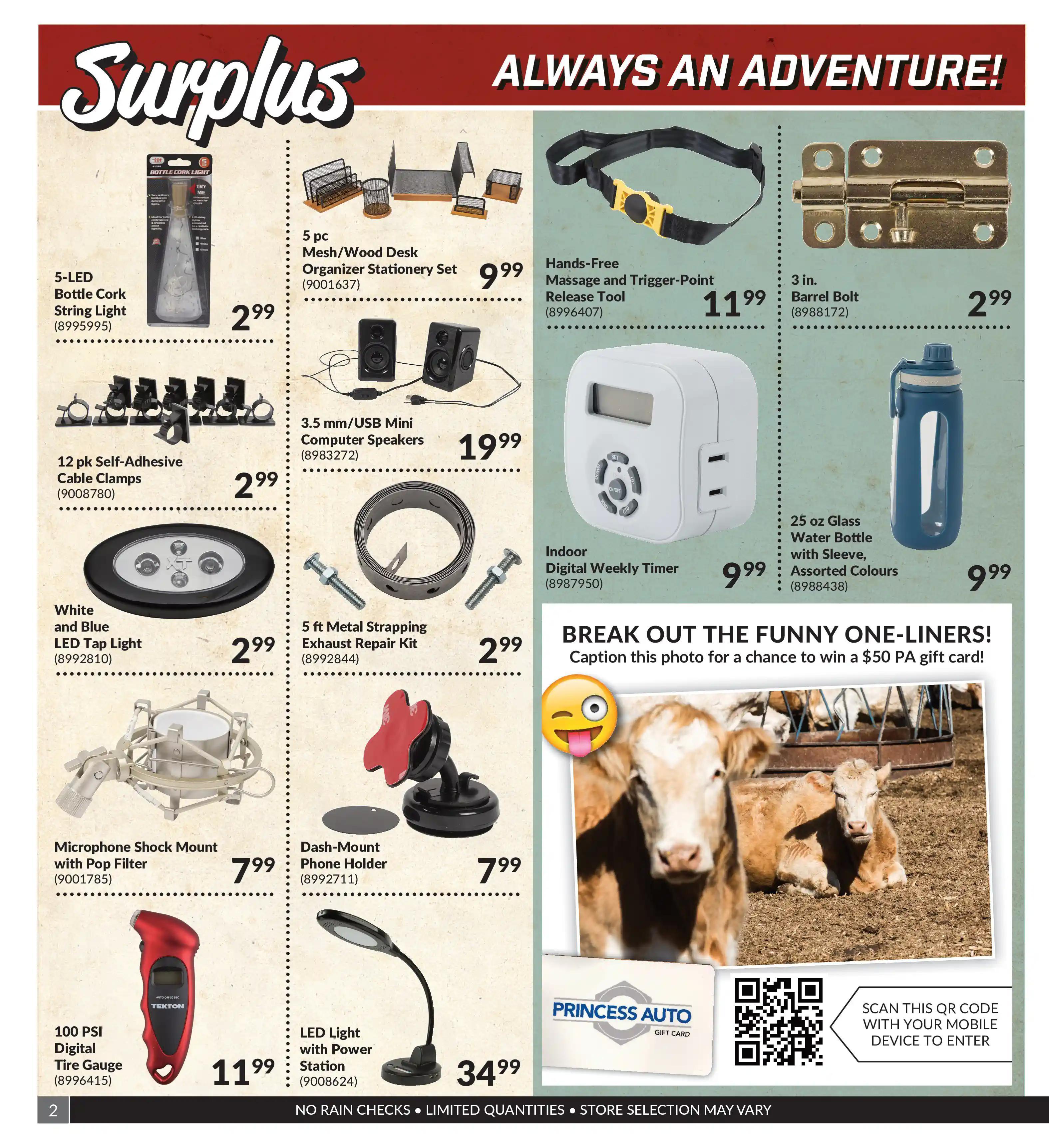 Princess Auto - Surplus - Page 2