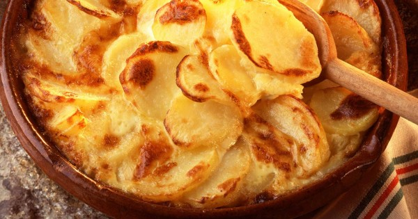 Potato gratin, with onions and Cantal cheese