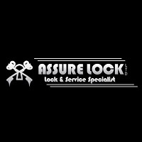 Visit Assure Lock Online