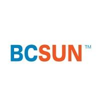 View BCSUN & Associates Inc. Flyer online