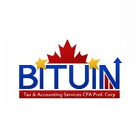 Visit Bituin Tax and Accounting Services Online