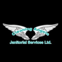 Visit Cleaning Angels Online