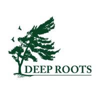 Visit Deep Roots Landscaping Online