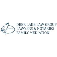 Visit Deer Lake Law Group Online