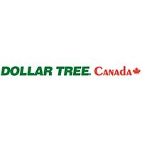 Visit Dollar Tree Online