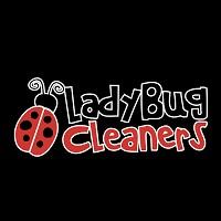 Visit LadyBug Cleaners Online