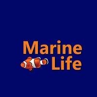 Visit Marine Life Online