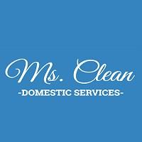 Visit Ms. Clean Online