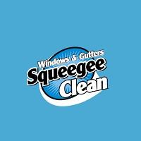 Visit Squeegee Clean Online