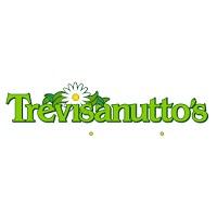 Visit Trevisanutto's Online