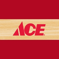 View Ace Canada Flyer online