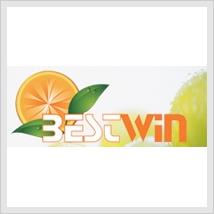 View Best Win supermarket Flyer online