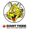 Giant Tiger Liquidation Centers online flyer