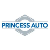 View Princess Auto Flyer online